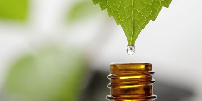 Top 4 Ways to Extract Essential Oils from Plants Custom Processing Services